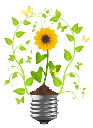 solar equipment: Girasol en la bombilla. Ilustraci�n vectorial, aislado en un blanco Vectores