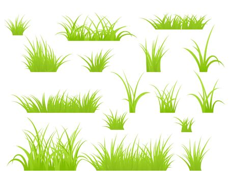 Fragment of a green grass. Stock Vector - 10312590