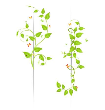 テントウムシと蝶と花の背景。ベクトル イラスト。