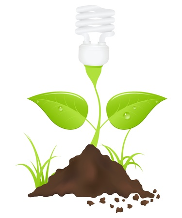Light bulb plant. Save energy. Vector illustration. Vector