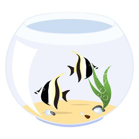 Deux poissons dans un aquarium isolé sur un fond blanc. Vector illustration.