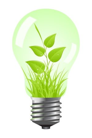 Tungsten light bulb with plant inside. Isolated on white background. Vector illustration. Stock Vector - 12932416