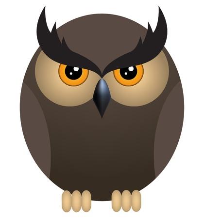 buho graduacion: Owl Brown enojado aislado en un fondo blanco