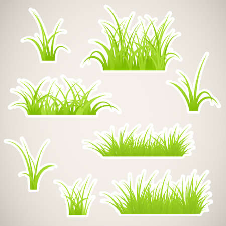Fragment of paper green grass. Vector illustration. Stock Vector - 17122993