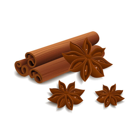 anise: Cinnamon and star anise isolated on white background. Vector illustration. Illustration