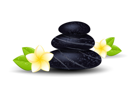 stones with flower: Spa stones and frangipani flower isolated on a white background. Vector illustration. Illustration