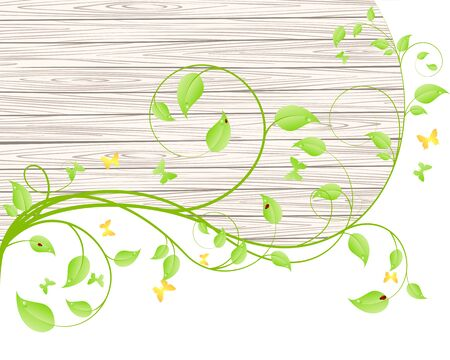 green branches: Green branches and leaves over wood fence background