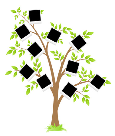 Family tree. Tree with frames for photos. Vector Illustration