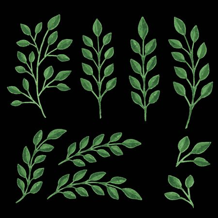 green branches: Two green branches isolated on black background. Vector illustration. Illustration