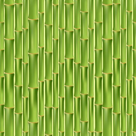 green bamboo: Seamless cartoon background of green bamboo wall. vector illustration Illustration