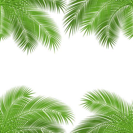 열 대 야자수 나뭇잎. 디자인 배경입니다. 벡터 일러스트 레이 션