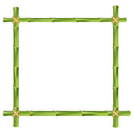 bamboo border: Bamboo frame isolated on a white background. Vector illustration.