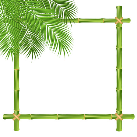 bamboo stick: Bamboo frame isolated on a white background. Vector illustration.