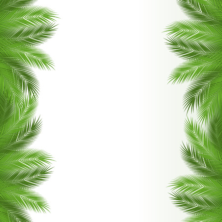 Tropical leaves. Floral design background. vector ilustration