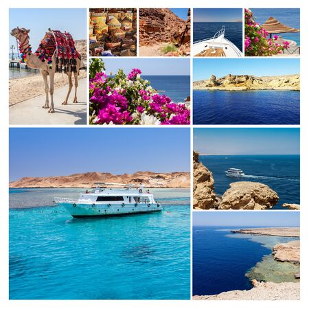 el sheikh: Collage of pictures from Egypt holidays. Sharm El Sheikh