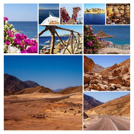 sharm: Collage of pictures from Egypt holidays. Sharm El Sheikh