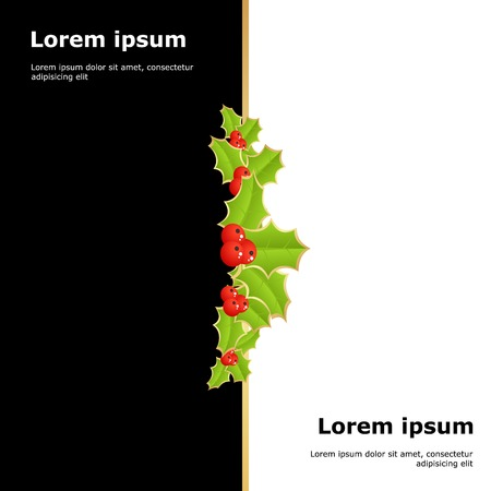 hollyberry: xmas template with poinsettia on white and black background. vector illustration Illustration