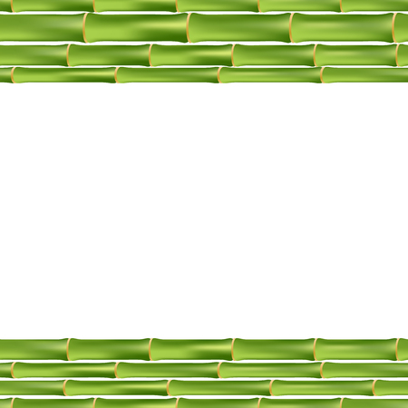 bamboo frame: green bamboo frame isolated on white background. vector illustration