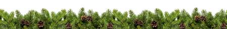 Kerstboomtakken op witte achtergrond als grens of malplaatje voor Kerstmiskaart