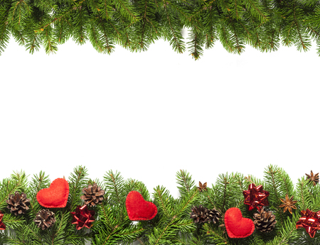christmas tree branches on white background as a border or template for christmas card stock photo - Christmas Tree Branches