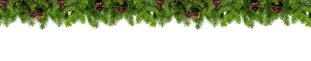 Christmas tree branches on white background as a border or template for christmas card 스톡 콘텐츠