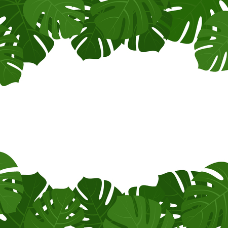Tropical monstera green eaves frame isolated on white background vector illustration.
