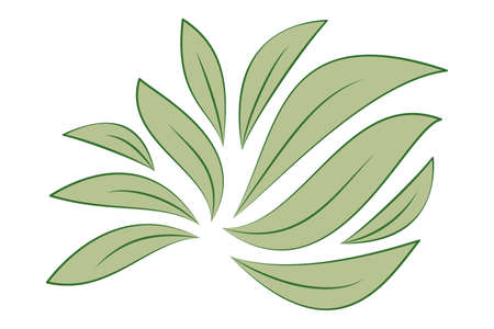 Green leaves isolated on white Illustration