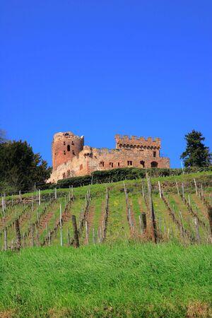 France, Alsace, Kintzheim castle photo