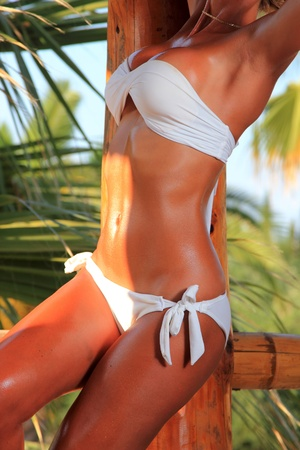 Young and sexy bikini model in tropical environment photo