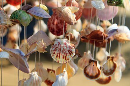 Sea shell curtain selective focus  photo