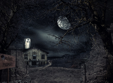 creepy: Haunted house with vulture waiting at the front gate