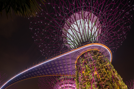 SINGAPORE - APRIL 21 2018 : Singapore Night Skyline at Gardens by the Bay. SuperTree Grove under Blue Night Sky in Singapore. Cityscape and city skyline in Singapore.