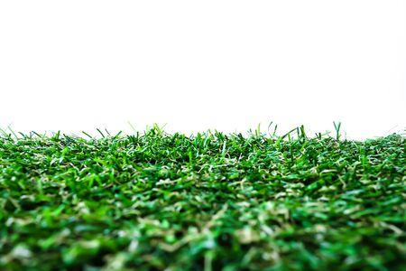 greensward: Grass with background Stock Photo