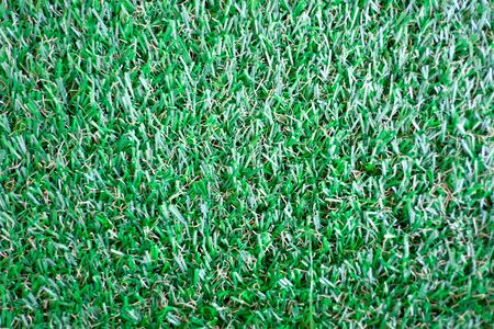 greensward: Grass Texture Stock Photo