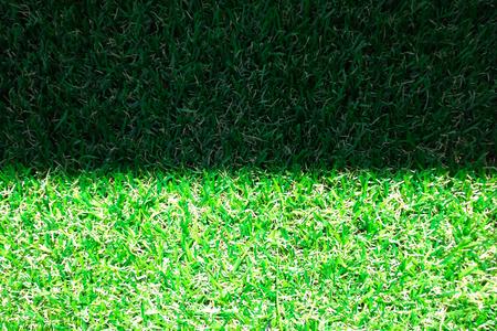greensward: Grass shadow and light Stock Photo
