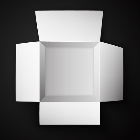 Package Box Opened. Top view. Vector