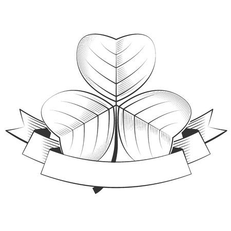 season s greeting: Shamrock on a white background,  excellent vector illustration, EPS 10