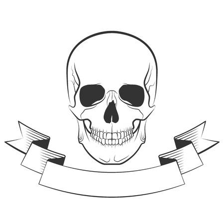 bleak: Human skull on isolated white background, excellent vector illustration, EPS 10