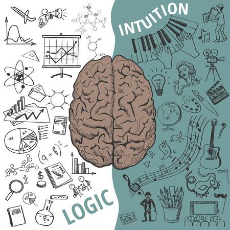 創造的な脳のアイデア。ベクトルの概念。左脳と右脳の機能、人間の脳の概念
