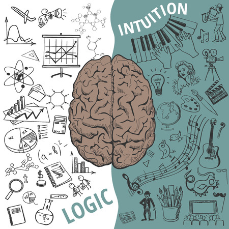 brains: Creative brain Idea. Vector concept. Left and right brain functions,Human brain concept