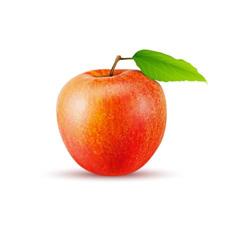 Rode appel op een witte achtergrond, uitstekende vector illustratie