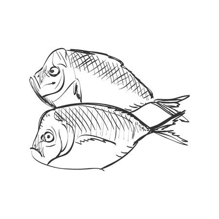 wall decal: Fish Doodle Sketch, excellent vector illustration,   Illustration