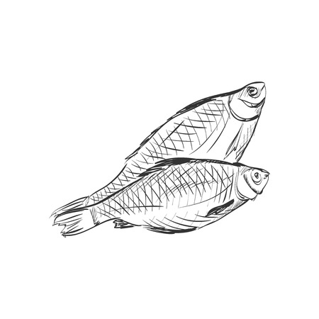 wall decal: Fish Doodle Sketch, excellent vector illustration