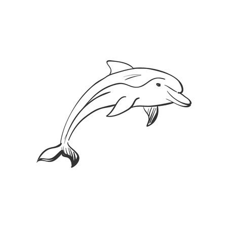 Beautiful dolphin jumping in the water. Doodle style Illustration