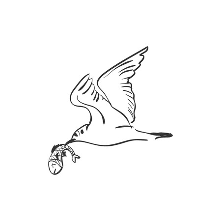 unkind: Doodle Seagull with fish in mouth vector illustration