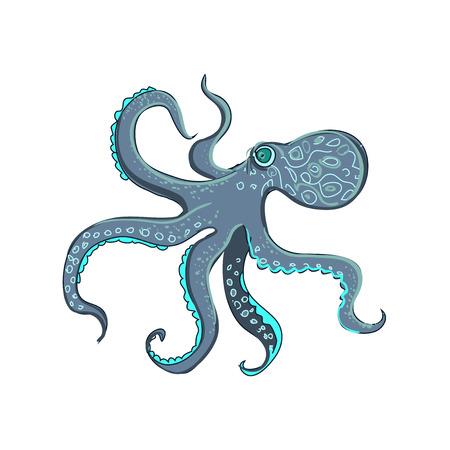 calamar: pulpo del doodle, aislado en el fondo blanco