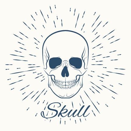 bleak: skull and vintage sun burst frame, excellent vector illustration, EPS 10 Illustration
