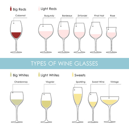 Set of types of wine and glasses red white sparkling and dessert wine