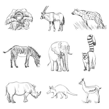 Character design Set of animals silhouettes. Orangutan, goat, hyena, zebra, elephant, lemur, rhino, deer, anteater