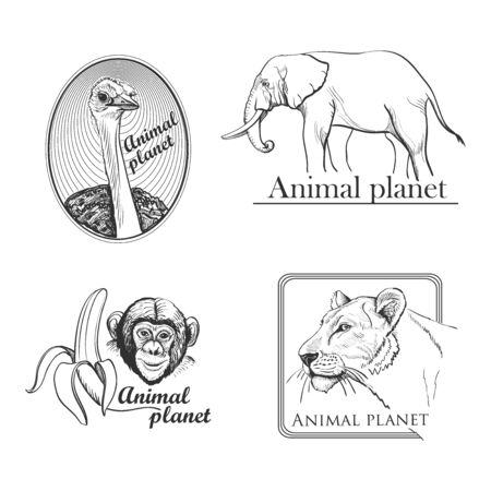 Animal planet Logo Symbol For Your Design with lioness, monkey, ostrich, elephant